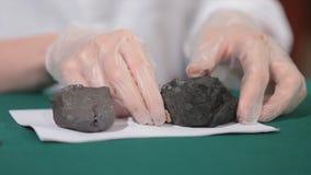 Męskie ręki w rękawiczkach trzyma węgiel Naukowiec z próbką węgiel Czarny węgiel w górnika ` s ręce Obrazy Royalty Free