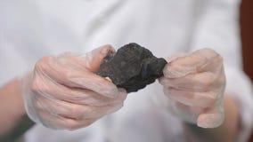 Męskie ręki w rękawiczkach trzyma węgiel Naukowiec z próbką węgiel Czarny węgiel w górnika ` s ręce Fotografia Royalty Free