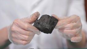 Męskie ręki w rękawiczkach trzyma węgiel Naukowiec z próbką węgiel Czarny węgiel w górnika ` s ręce Zdjęcia Stock