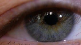 Męskiego oka makro- wideo Ucznia zakończenie rusza się w oku zdjęcie wideo