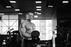 Męskiej sprawności fizycznej bicepsów wzorcowy robi ćwiczenie Zdjęcia Stock