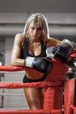 Młoda ładna bokser kobiety pozycja na pierścionku zdjęcie royalty free