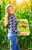 Młoda średniorolna dziewczyna na kukurydzanym polu Obraz Stock