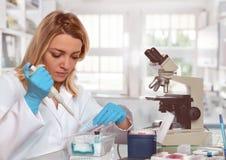Młoda żeńska technika lub naukowiec ładujemy ciekłą próbkę w próbną balię zdjęcia stock