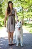 Młoda atrakcyjna caucasian kobieta z ekspresyjnym psem duży szwajcarski pasterski traken w zieleń parku Pięknej kobiety i śnieżne zdjęcie stock