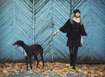 Młoda atrakcyjna dziewczyna ubierający elegancko spacery z psim greyh Zdjęcie Stock