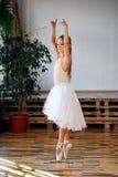 Młoda balerina w białego spódniczka baletnicy ćwiczy tanu rusza się zdjęcie royalty free