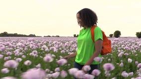 Młoda biracial kobieta wycieczkuje z pomarańczowym plecakiem na ścieżce przez pola różowi makowi kwiaty zbiory wideo