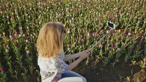 Młoda blondynki dziewczyna robi selfie przy tulipanu polem zbiory
