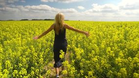 Młoda blondynki kobieta pozuje w pięknym rapeseed polu zbiory wideo