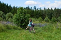 Młoda brunetki dziewczyny lupine łąka Obraz Stock