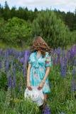 Młoda brunetki dziewczyny lupine łąka Obrazy Royalty Free