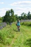 Młoda brunetki dziewczyny lupine łąka Obraz Royalty Free
