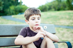 Młoda chłopiec gapi się przy dandelion przy parkiem fotografia royalty free