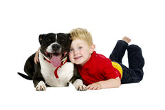 Młoda chłopiec i pies odizolowywający na białym tle Fotografia Stock