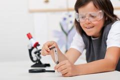 Młoda chłopiec nauki roślina w zajęcia z biologii Zdjęcie Royalty Free