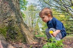 Młoda chłopiec Obok drzewa obraz stock