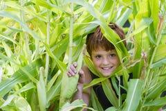 Młoda chłopiec szczęśliwa z jego kukurudzą Fotografia Royalty Free