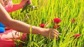 Młoda dama w kwiat girlandzie siedzi wśród zielonego ryżu pola zdjęcie wideo