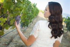 Młoda Dorosła brunetki kobieta Cieszy się win winogrona w winnicy Zdjęcie Royalty Free