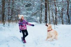 Młoda dziewczyna bawić się z golden retriever na zima spacerze Obrazy Royalty Free