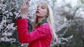 Młoda dziewczyna spacery przez wiosny kwitnie ogród i obwąchują kwiaty zdjęcie wideo