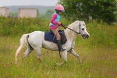 Młoda dziewczyna ufny galopujący koń na polu Fotografia Royalty Free