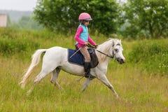 Młoda dziewczyna ufny galopujący koń na polu Obraz Royalty Free