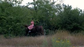 Młoda dziewczyna w ochronnej hełma i menchii sukni jedzie brązu konia na tle drzewa i ulistnienie 4K 4K wideo zdjęcie wideo