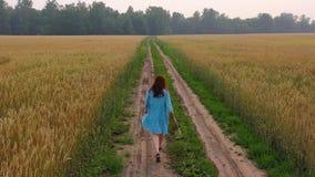 Młoda dziewczyna w sukni chodzi wzdłuż pszenicznego pola Wczesny poranek, lekka mgła zbiory