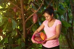 Młoda dziewczyna z cacao owoc obraz stock