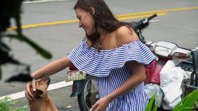 Młoda kobieta bawić się z ulica psem w Tajlandia zbiory wideo