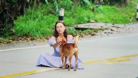 Młoda kobieta bawić się z ulica psem w Tajlandia zbiory