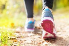 Młoda kobieta bieg w jesieni lasowy zmierzch zaświeca Zdjęcia Stock