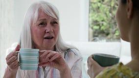 Młoda Kobieta Bierze czas Odwiedzać Starszego Żeńskiego sąsiad zbiory