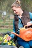 Młoda kobieta bierze opiekę kwiaty w ogródzie Zdjęcie Royalty Free