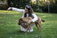Młoda kobieta bierze selfie z jej zwierzę domowe psem fotografia royalty free