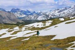 Młoda kobieta chodzi w Kanadyjskich Skalistych górach obrazy stock