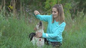 Młoda kobieta chodzi z psem w lesie zbiory
