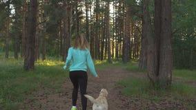 Młoda kobieta chodzi z psem w lesie zdjęcie wideo