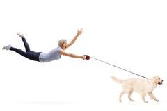 Młoda kobieta ciągnie jej psem Zdjęcie Royalty Free