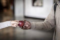 Młoda kobieta daje jabłka bezdomna osoba obraz stock