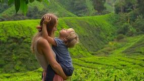 Młoda kobieta i jej syna odwiedzać średniogórze herbaciane plantacje Świeży, herbaciany pojęcie, zdjęcie wideo