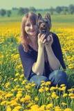 Młoda kobieta i Yorkshire terier w dandelion łące Obraz Royalty Free