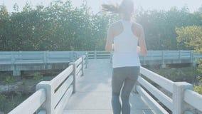 Młoda kobieta jogging na mangrowe lasowej ścieżce Steadicam strzał, tylni widok zbiory wideo