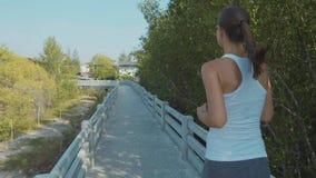 Młoda kobieta jogging na mangrowe lasowej ścieżce Steadicam strzelał w zwolnionym tempie zbiory