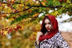 Młoda kobieta portret w jesień kolorze Obrazy Royalty Free