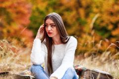 Młoda kobieta portret w jesień kolorze Obraz Royalty Free