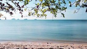 Młoda Kobieta Relaksuje w hamaku na plaży antena zbiory
