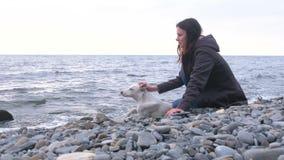 Młoda kobieta siedzi na kamiennej plaży morzem z jej białym psem zbiory wideo